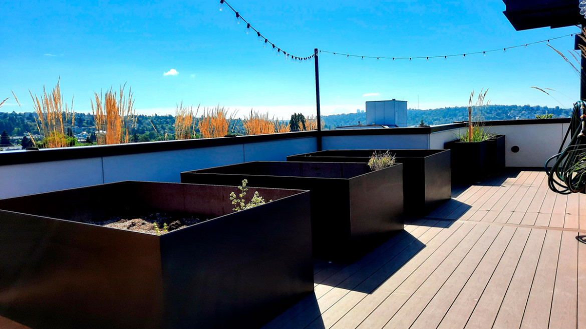 Vitality on 63 -rd roof